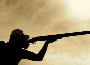 claypigeonshooting.....